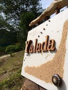 kashi-Yalada